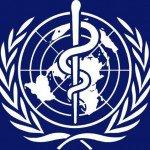 На заседании ООН Россия отказалась подписывать «исторический документ» извращенцев