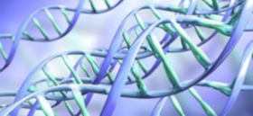 Ученый-генетик научно доказал реальность событий, изложенных в Библии