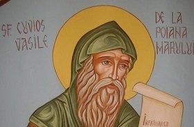 Преподобный Василий Поляномерульский: О воздержании от брашен, возбраненных монахам (продолжение)