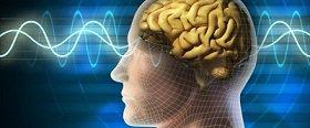 Ученые предупреждают: компьютеры лишают людей памяти :: В Израиле провели эксперимент по сравнению силы памяти у людей различного возраста
