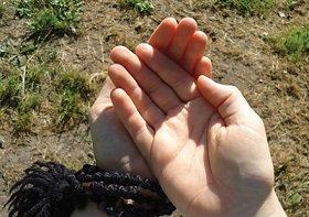 «ДАЖДЬ КРОВЬ И ПРИИМИ ДУХ»: Беседа о послушании в современных условиях